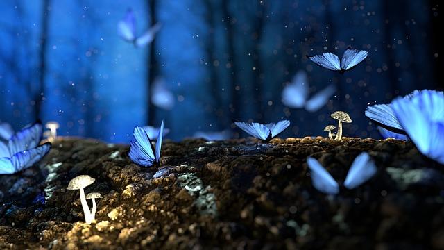 modří motýli